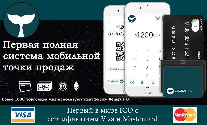 ICO Beluga Pay — принимайте оплату в криптовалюте!